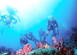 深島 | おおいたの島めぐり